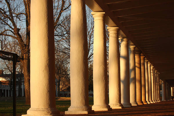 Photograph - Columns At The University Of Virginia by Emanuel Tanjala