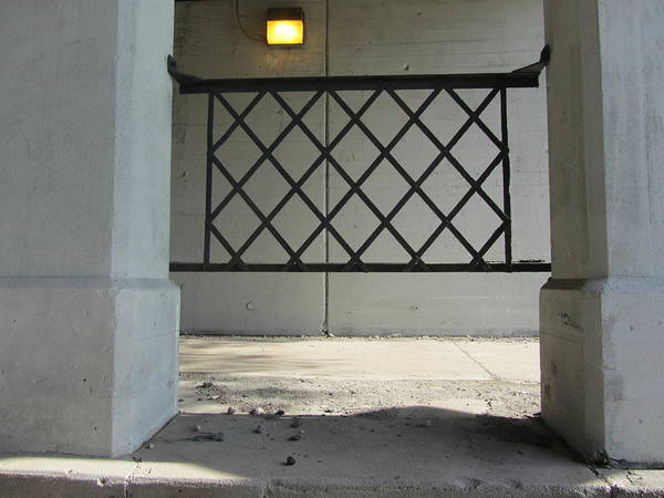 Photograph - Columns With Grid 1 by Anita Burgermeister