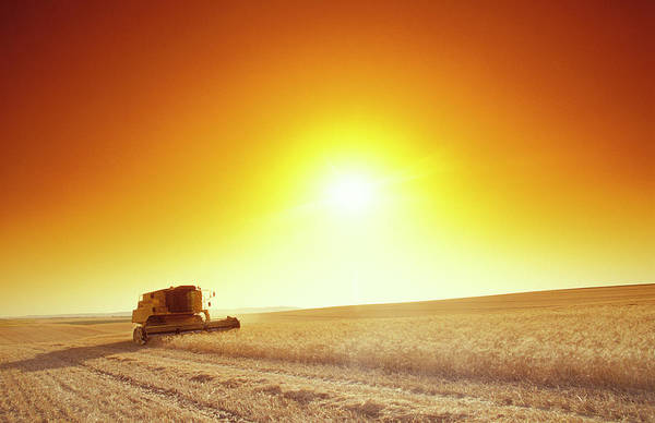 Harvesting Wall Art - Photograph - Combine Harvester by Chris Sattlberger/science Photo Library