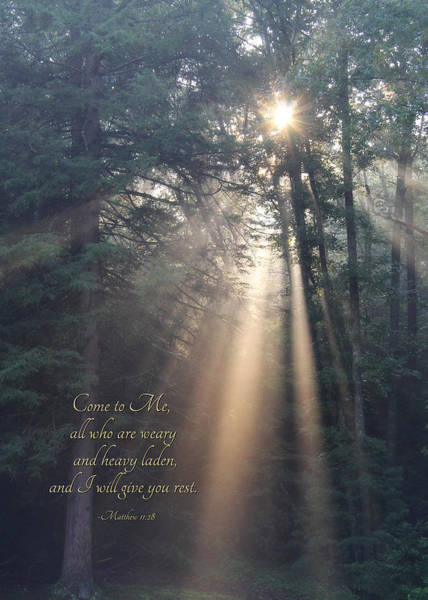 Biblical Photograph - Come To Me by Lori Deiter