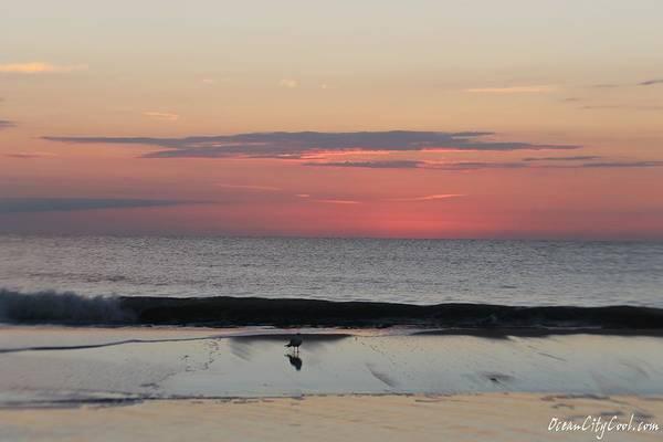 Photograph - Coming Dawn by Robert Banach