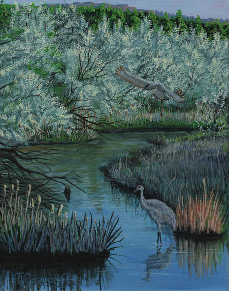 Sand Creek Painting - Coming In by Timithy L Gordon
