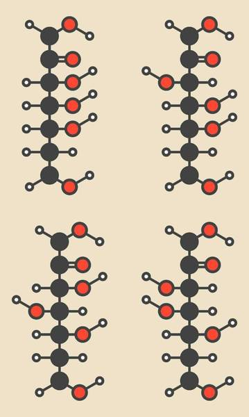 Index Photograph - Common Sugars Molecules by Molekuul