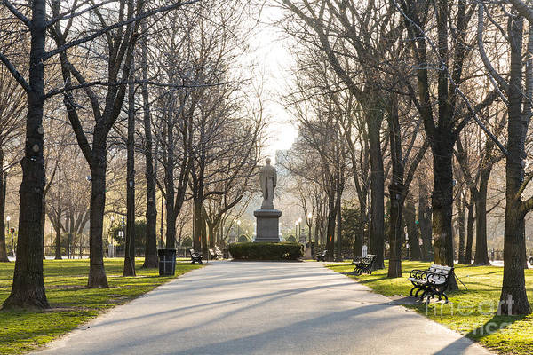 Photograph - Commonwealth Avenue Mall by Susan Cole Kelly