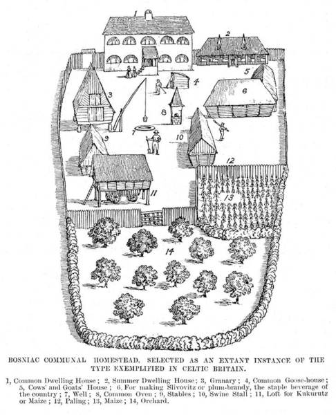 Homestead Drawing - Communal Homestead  Typical Of Those by Mary Evans Picture Library