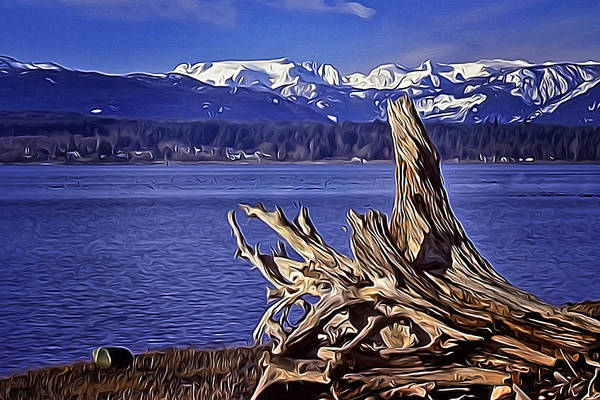 Frozen River Digital Art - Comox Glacier And Estuary by Richard Farrington