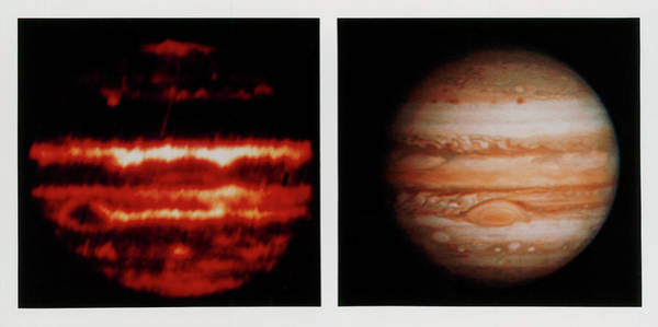 Voyager Photograph - Comparison Of Infrared & Optical Images Of Jupiter by Nasa/science Photo Library
