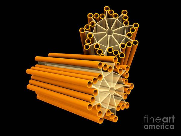 Digital Art - Conceptual Image Of Centriole by Stocktrek Images