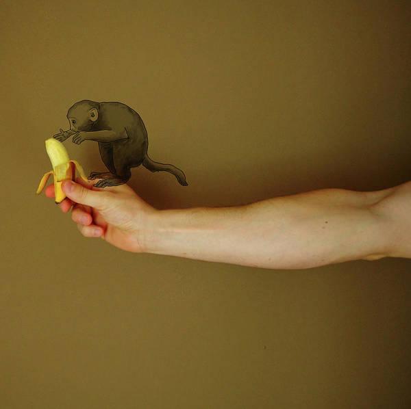 Human Hand Photograph - Conceptual Monkey by Eliskapodzimkova