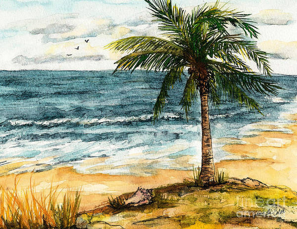Painting - Conch Shell In The Shade by Janis Lee Colon