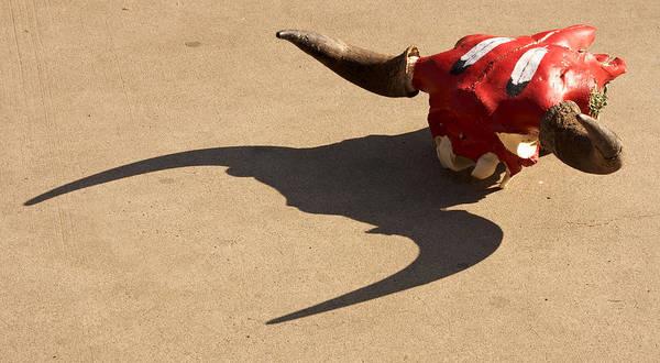 Photograph - Concrete Buffalo Witnesses West 2012 by James Warren