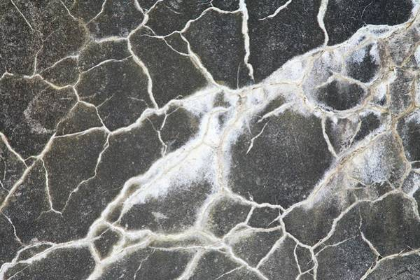 Wall Art - Photograph - Concrete Cracks by Michael Clutson/science Photo Library