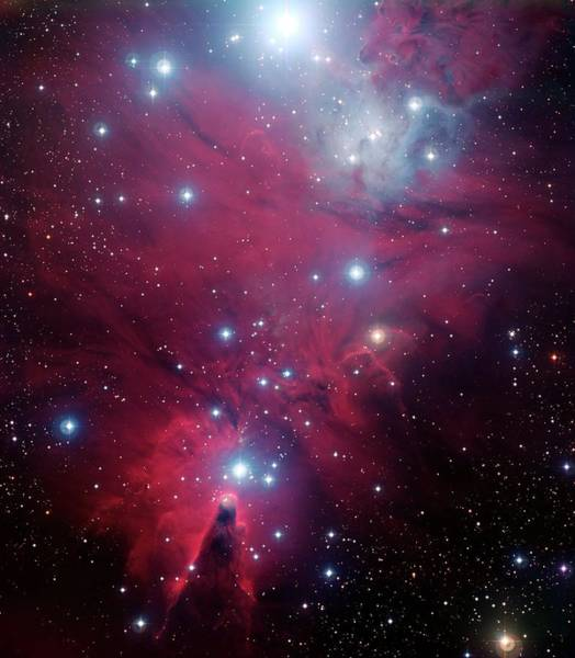 Wall Art - Photograph - Cone Nebula And Christmas Tree Cluster by European Southern Observatory/science Photo Library