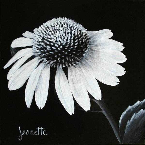 Painting - Coneflower by Jeanette Fellows