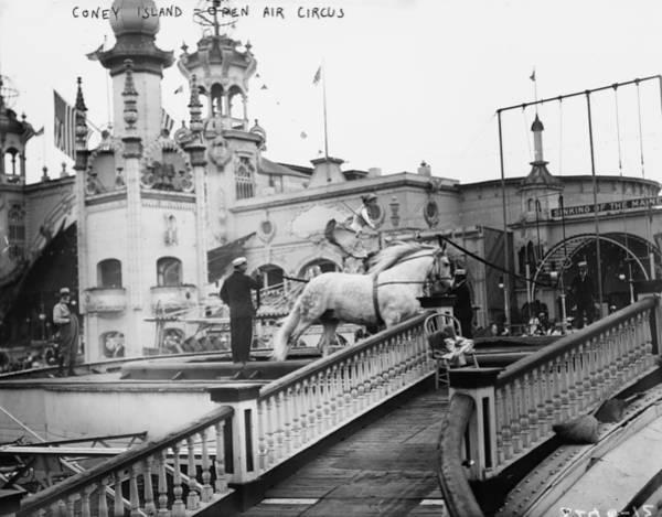 Photograph - Coney Island Circus, C1910 by Granger