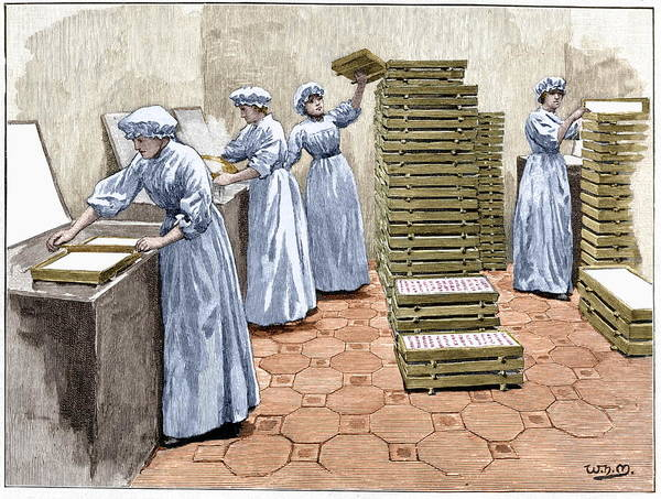 Manufacture Wall Art - Photograph - Confectionery Manufacture by Sheila Terry/science Photo Library