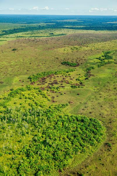 Wall Art - Photograph - Congo Grassland by James Steinberg