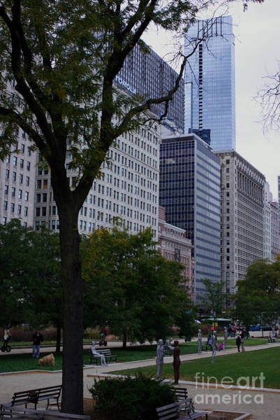 Photograph - Grant Park Chicago by Frank J Casella