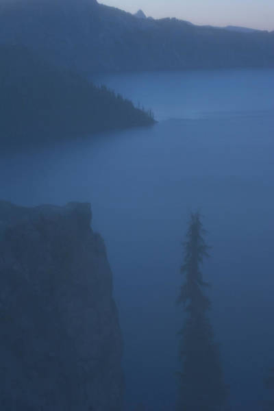 Volcanic Craters Photograph - Coniferous Tree And Crater Lake by Phil Schermeister
