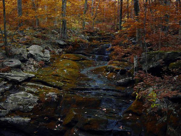 Photograph - Connecticut Autumn by Raymond Salani III