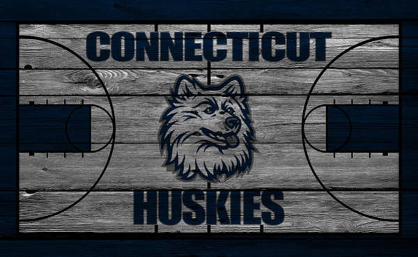 Connecticut Photograph - Connecticut Huskies by Joe Hamilton