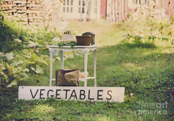 Vegetable Garden Photograph - Connecticut Vegetable Stand by Diane Diederich