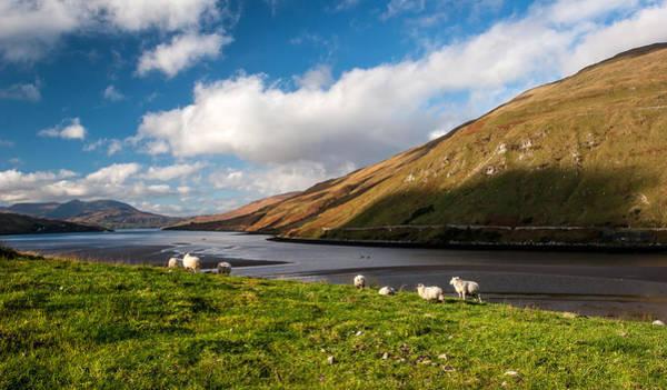 Photograph - Connemara Landscape Ireland by Pierre Leclerc Photography