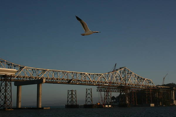 Photograph - Constructing The New Bay Bridge by Cynthia Marcopulos