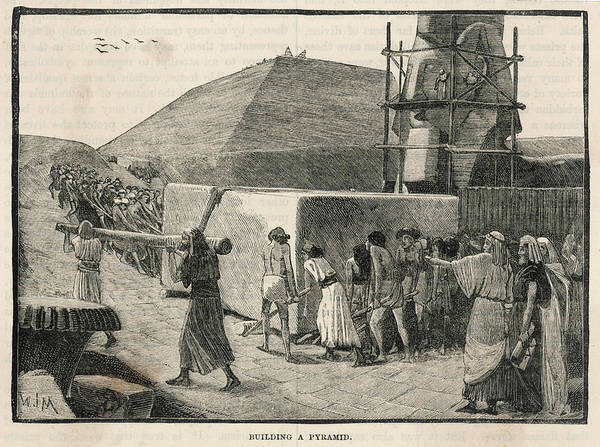 Wall Art - Drawing - Construction Of The Pyramids In Egypt by Mary Evans Picture Library