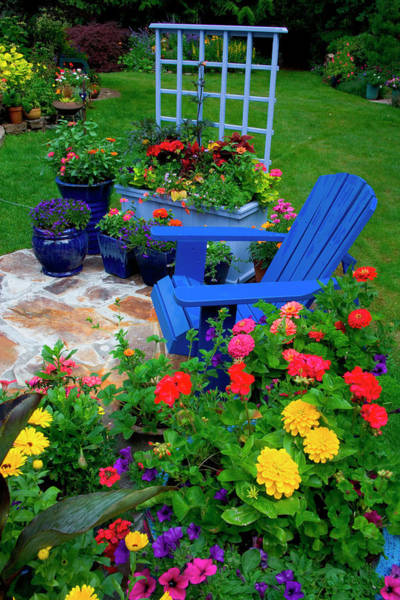 Zinnia Wall Art - Photograph - Container Garden Design With Blue Chair by Darrell Gulin