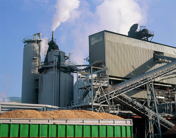Manufacture Wall Art - Photograph - Container Of Wood Chips Outside A Paper Mill by Simon Fraser/science Photo Library