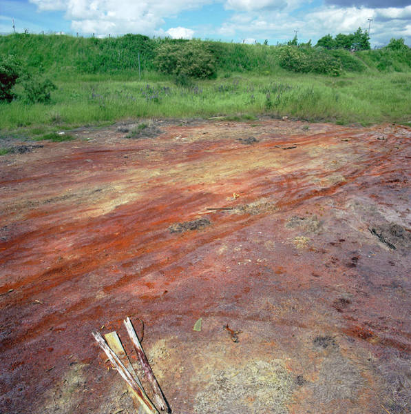 Soil Science Wall Art - Photograph - Contaminated Soil by Robert Brook/science Photo Library