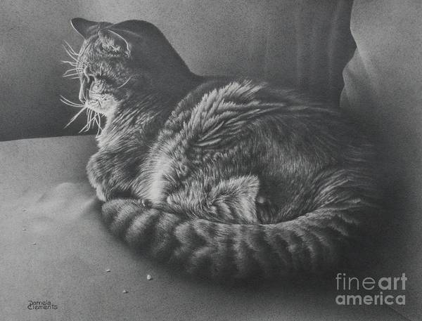 Drawing - Contentment by Pamela Clements