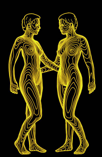 Contour Map Of Identical Female Twins Face To Face Art Print by Dr Robin Williams/science Photo Library