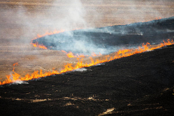 Wall Art - Photograph - Controlled Agricultural Burn, Palouse by Christopher Kimmel