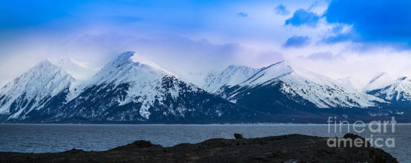 Anchorage Photograph - Cook Inlet by Inge Johnsson