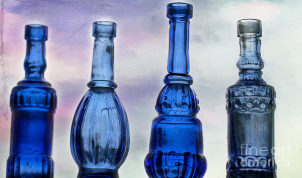 Photograph - Cool And Blue by Sabrina L Ryan