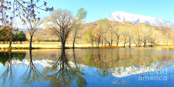 Bishop Hill Photograph - Cool And Reflective by Marilyn Diaz