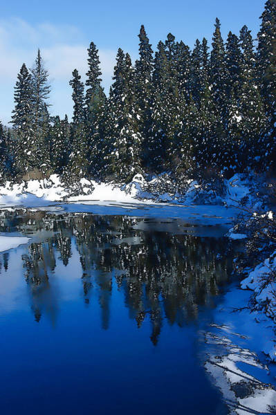 Frozen River Digital Art - Cool Blue Shadows - Riverbank Winter by Georgia Mizuleva