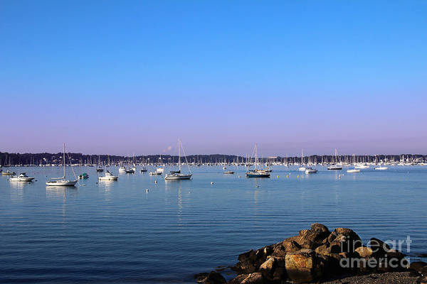 Photograph - Cool Blue Morning by Jemmy Archer