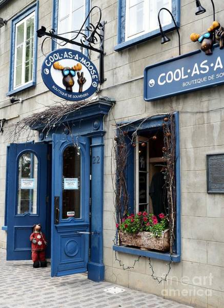 Photograph - Cool In Quebec by Mel Steinhauer
