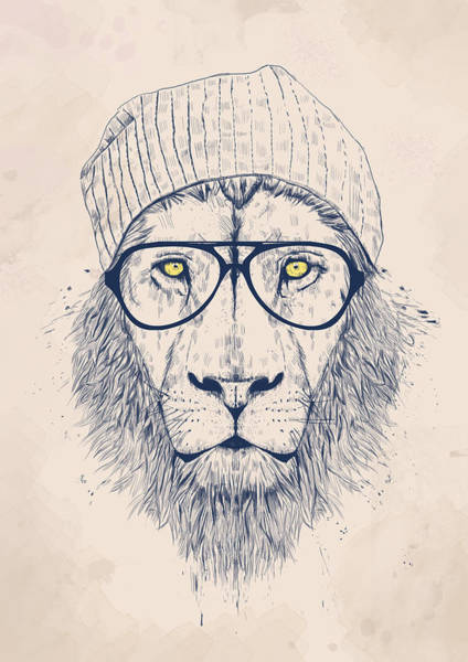 Funny Wall Art - Digital Art - Cool Lion by Balazs Solti