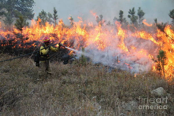 Cooling Down The Norbeck Prescribed Fire. Art Print