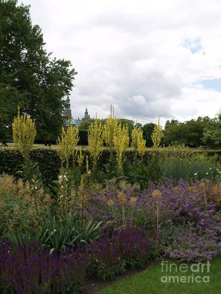 Photograph - Copenhagen Garden by Robin Maria Pedrero