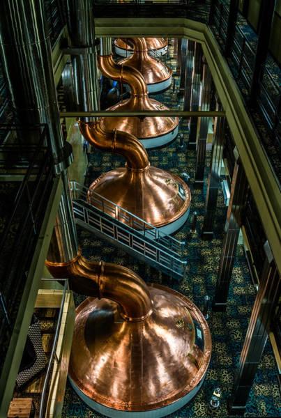 Copper Tops Art Print