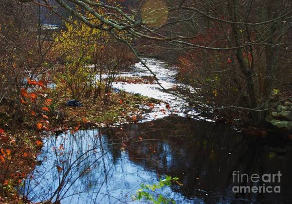 Wall Art - Photograph - Copps Brook Vision # 2 by Marcus Dagan