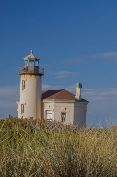Wall Art - Photograph - Coquille River Lighthouse With Seagrass by Bridget Calip