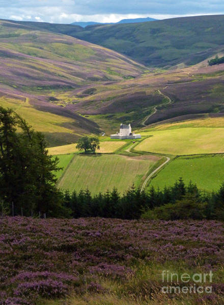 Photograph - Corgarff Castle - Heather Hills by Phil Banks