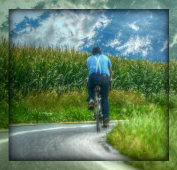 Mixed Media - Corn Fields by Trish Tritz