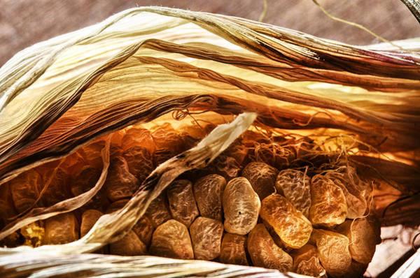 Corn Wall Art - Photograph - Corn Roast by Susan Capuano